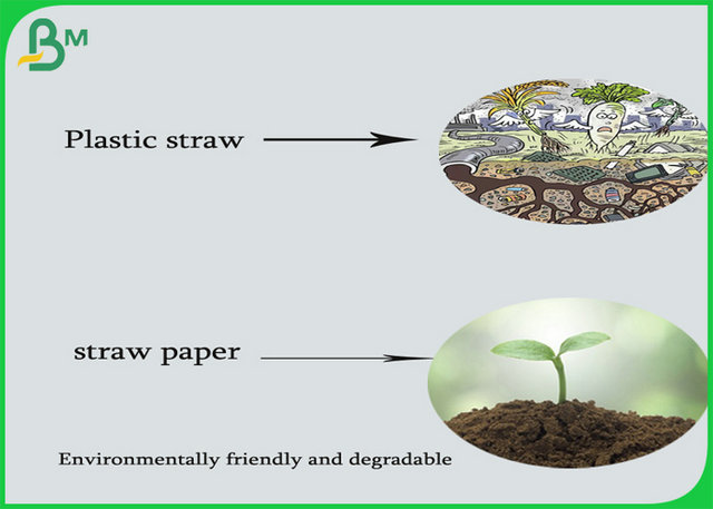 120gsm Environmentally friendly and degradable Ink printable straw paper