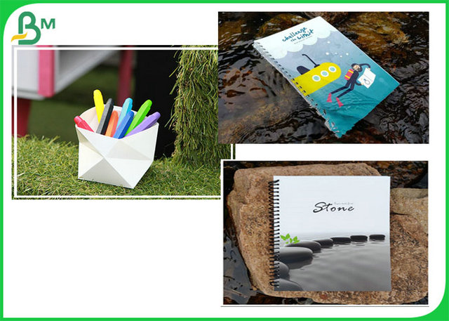 Waterproof And Durable 100UM 120UM 140UM Stone Paper Roll For Notebook