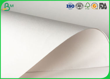 80gsm - 140gsm White Food Grade Paper Roll Smooth Surface For Food Tray Pallet