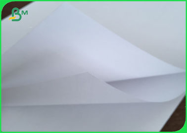 China 120gsm 60gsm White Offset Paper Bond Woodfree Paper Roll For Hardcover Book / Textbook supplier