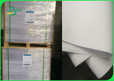 70 / 80 / 90GSM High Whiteness Copier Paper Rolls for Printing Press