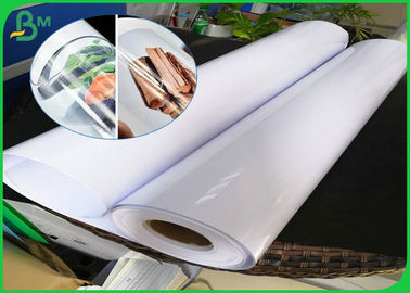 Waterproof Cardboard Paper Roll , 150 gsm 190gsm High Glossy RC Photo Paper Roll With Matte Back For Pigment Ink