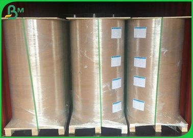 FDA 135gsm + 10gsm PE Coated Paper For Lunch Food Packaging Box One Side Coated