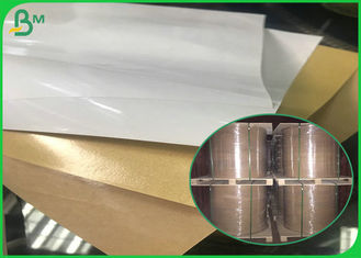 Jumbo Roll PE Coated One Side Brown / White Kraft Paper for Food Packing