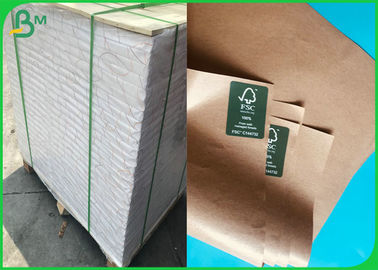 60G 80G 90G 100G Food Grade Paper PE Coated With 594 * 841MM FDA Certified