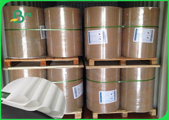 China Thickness 30 - 350gsm PE Coated White Color Kraft Paper In Coils For Various Packing supplier