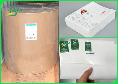 China 300gr 350gr Environmental Heatable PE Coated White Kraft Paper Sheet For Box supplier