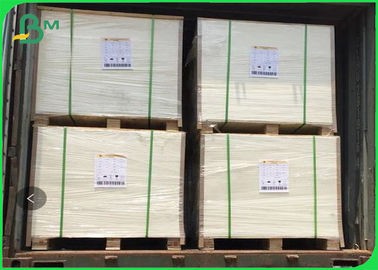 350gsm SBS FBB Cardboard For Invisible Sock Packaging In Sheet 90 X 110cm