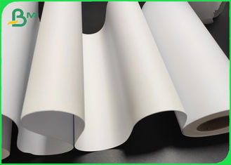 "CAD Plotter Paper Rolls For HP Design Jet & Canon Printers 36"" X 150'"