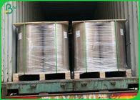 80gsm 100gsm 150gsm 250gsm 300gsm Anti Oil C1S PE Coated Paper Rolls Cup Paper