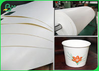 100% Biodegradable PLA Coated Food Grade Paper Roll Cup Base Paper 210g + 26g