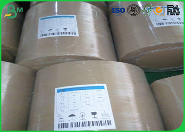 FBB Ivory Cardboard Paper Roll One Side Coated White 300gsm 350gsm With Good Flatness