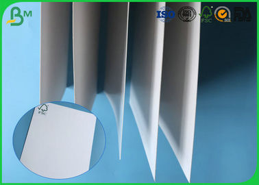 China FSC Certificted 200g 250g 300g 350g 400g 450g Glossy FBB Board For Packing Boxes factory